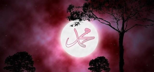 Rasûlullah'ın Namazı