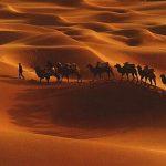 Ey Allah'ın Resulü, helâk oldum! – Oruç ve Kefaret